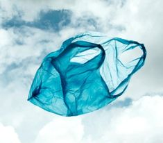 plastic bag in the wind