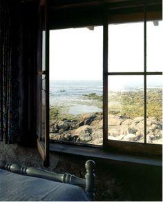 great window + view