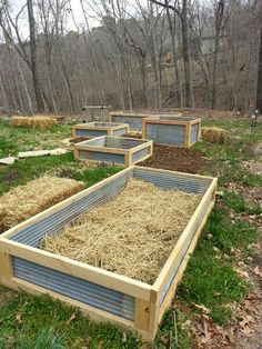 Raised garden beds - recycled tin. The wooden parts will eventually rot, but it's an improvement over solid wood. I use hay bales myself, then turn them in the following Spring.