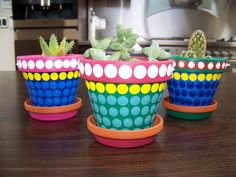 Terracotta Cactus Pots
