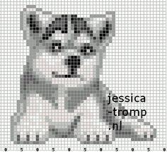 Husky pup  perler bead pattern