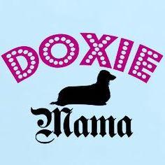 Doxie Mama