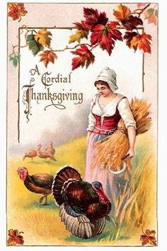 thanksgiv card, thanksgiving cards, thanksgiv postcard