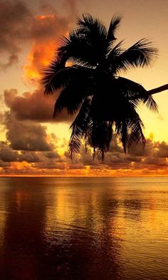 Golden sunset. Bali