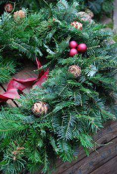 evergreen wreath... christmas time, holiday wreaths, season, holidays, ana rosa, pine, light, evergreen wreath, berries