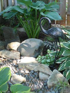 dry creek bed, shade garden