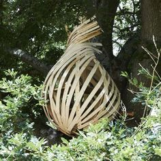 A weaver bird's nest was the inspiration for this wooden treehouse