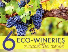 6 Environmentally Conscious Wineries Around the World
