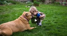 ADORBS! Life Lessons You Can Learn from Your Dog | via @SparkPeople #pet #inspiration #cute #funny