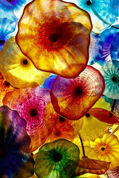 """""""Bellagio"""" by Kenneth Verberg. It's part of the ceiling of the Bellagio Casino in Las Vegas. The Bellagio Lobby ceiling is adorned with 2,000 hand-blown glass flowers - the Fiori di Como - created by world-renowned artist, Dale Chihuly. glass art, las vegas, glass flowers, glasses, color, ceilings, rainbow, dale chihuli, dale chihuly"""