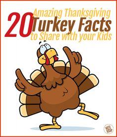20 Amazing Thanksgiv