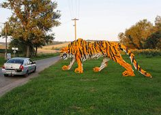 wood art, tiger, hellowood, front yards, wood sculpture