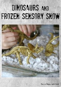 Dinosaurs and Frozen Sensory Snow  Why not play with something freeeezing cold during the hot summer?  We made our own pretend snow for around a dollar and it stayed cold for two hours!    FUN AT HOME WITH KIDS