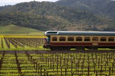 Take a train from San Francisco to the Napa Valley. Visit vineyards and enjoy a fantastic seasonally inspired menu. california wine, wine train, travel wine