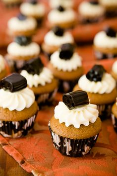 Mini Black Licorice Cupcakes for Halloween - from Cupcake Project