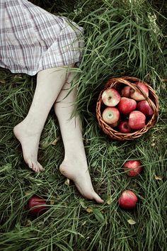 Apples ...