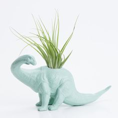 #mint #dino Dinosaur Planter with Air Plant Room Decor, College Dorm Ornament, Toy Planter