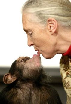 Jane Goodall, primatóloga y etóloga.  http://sociedad.elpais.com/sociedad/2013/02/19/actualidad/1361285200_432335.html
