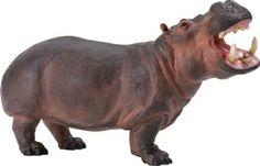 Hippopotamus (Wildlife Wonders) at theBIGzoo.com, an animal-themed store established in August 2000.