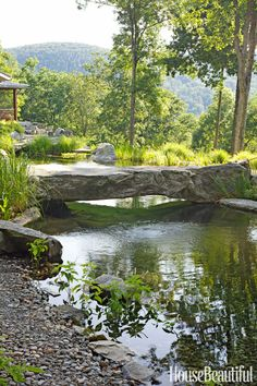 Natural Swim Pond Ideas