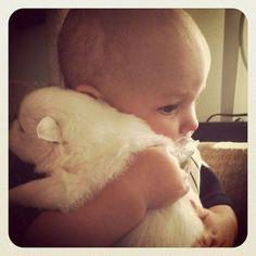 Puppies...hugging babies.