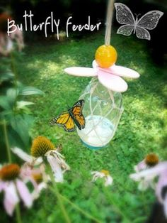 Make A DIY Butterfly Feeder In 6 Easy Steps  Encourage butterflies to visit your yard and pollinate your plants by making a butterfly feeder. It's easy! You'll need: A small jar (a mason jar or a baby food jar will work), hammer and nails, string, a sponge, sugar, water and construction paper.