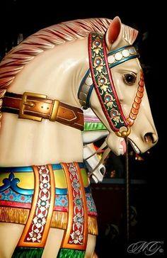 Carousel Horse  <3