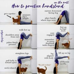 Bendy Yoga Wannabe o