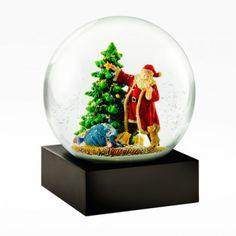 Santa & Puppy Snow G