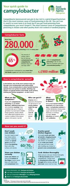 Infographic: your quick guide to the food poisoning bug campylobacter. Check out the facts, how it's spread and how to avoid it. Spread the word, not the germs.  www.food.gov.uk/chicken