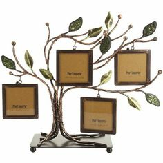Pier 1 Tree Photo Holder ~ this is so different from other tree photo holders I've seen.