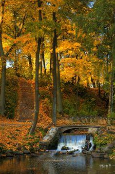 Waterfall Bridge, Woodstock, Vermont. #fall #autumn #Vermont #travel