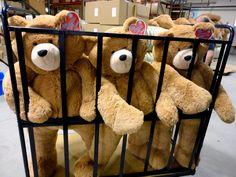Big Hunka Love Bears in a cage!