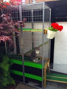 A Garden Catio – Cat Paradise! - IKEA Hackers