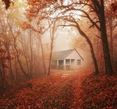 Old house in the forest... by Heaven Man, via 500px