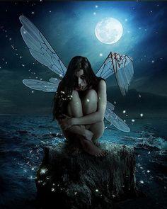 Lost Fairy
