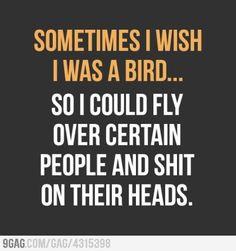 Sometimes I wish I was bird