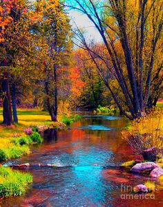 ✯ Reflections In A Country Brook autumn scenes, magnific place, fall, beauty, places, reflect, art color nature, beauti sceneri, country