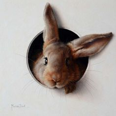 """""""Lapin 5"""" - by Marina Dieul.... ~Oil"""