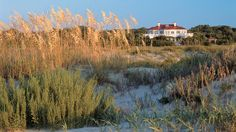Charleston is known for its historic district, but the city also has pristine beaches!