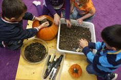 Pumpkin Planting by Preschool Daze