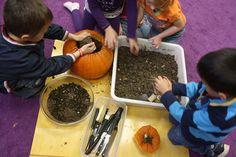 Pumpkin Planting by Preschool Daze
