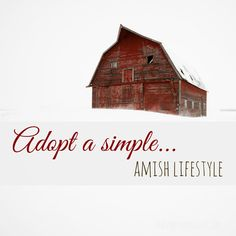 Adopt a Simple Amish