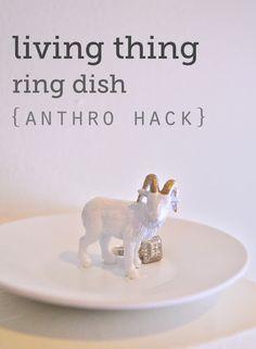 Living Thing Ring Dish {anthro hack}