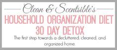 The Home Organizatio