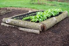 logs for quick raised beds