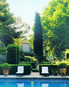 and stunning garden