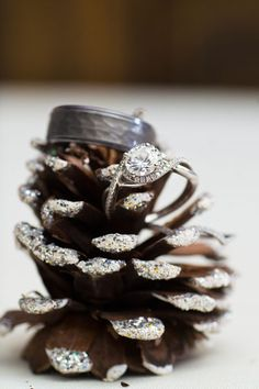 yes to pine cones