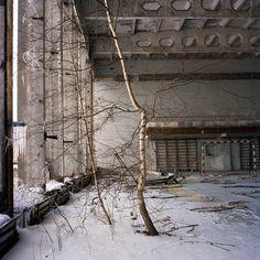 Rena-Effendi-Still-Life-in-the-Zone-010-HR.jpg 980×980 pixels