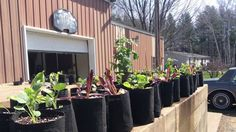 I would really appreciate it if you would check out our New Web Site! www.growbaggardensystems.com/ Get everything you need to build your own Rain Gutter Grow System or Kiddie pool/ Hybrid Grow System! Net cups, Float valves, Root Pouch Grow Bags and all the accessories you might need! Also check out our Facebook Rain Gutter Grow System Group Page!  Some of the friendliest gardeners you will ever meet! facebook.com/groups/144745362329424/
